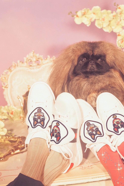 Cápsula Año del Perro de Gucci. Fotografía: Petra Collins