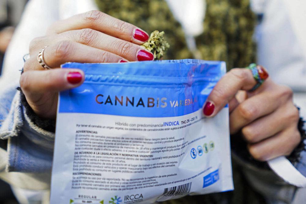 Venta de marihuana legal en Uruguay. Fotografía: AP