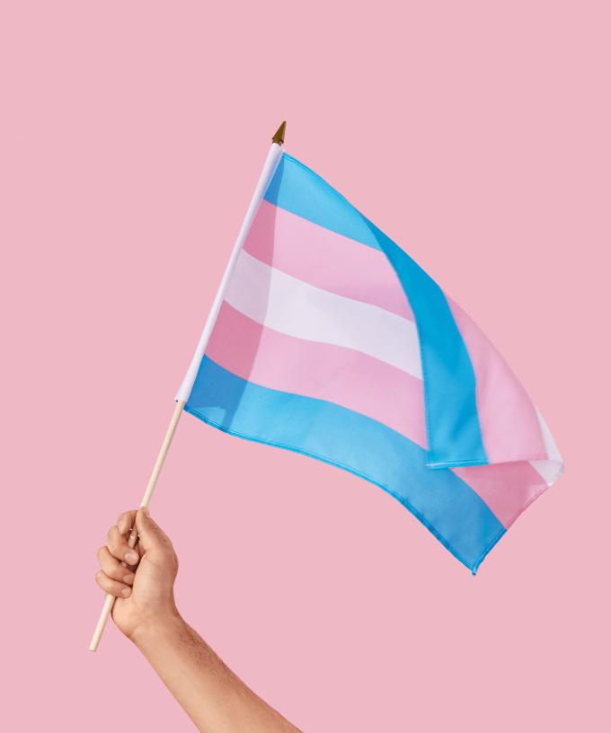 Nuevo estudio demuestra que los cerebros de las personas trans son similares a la del género con el que se identifican