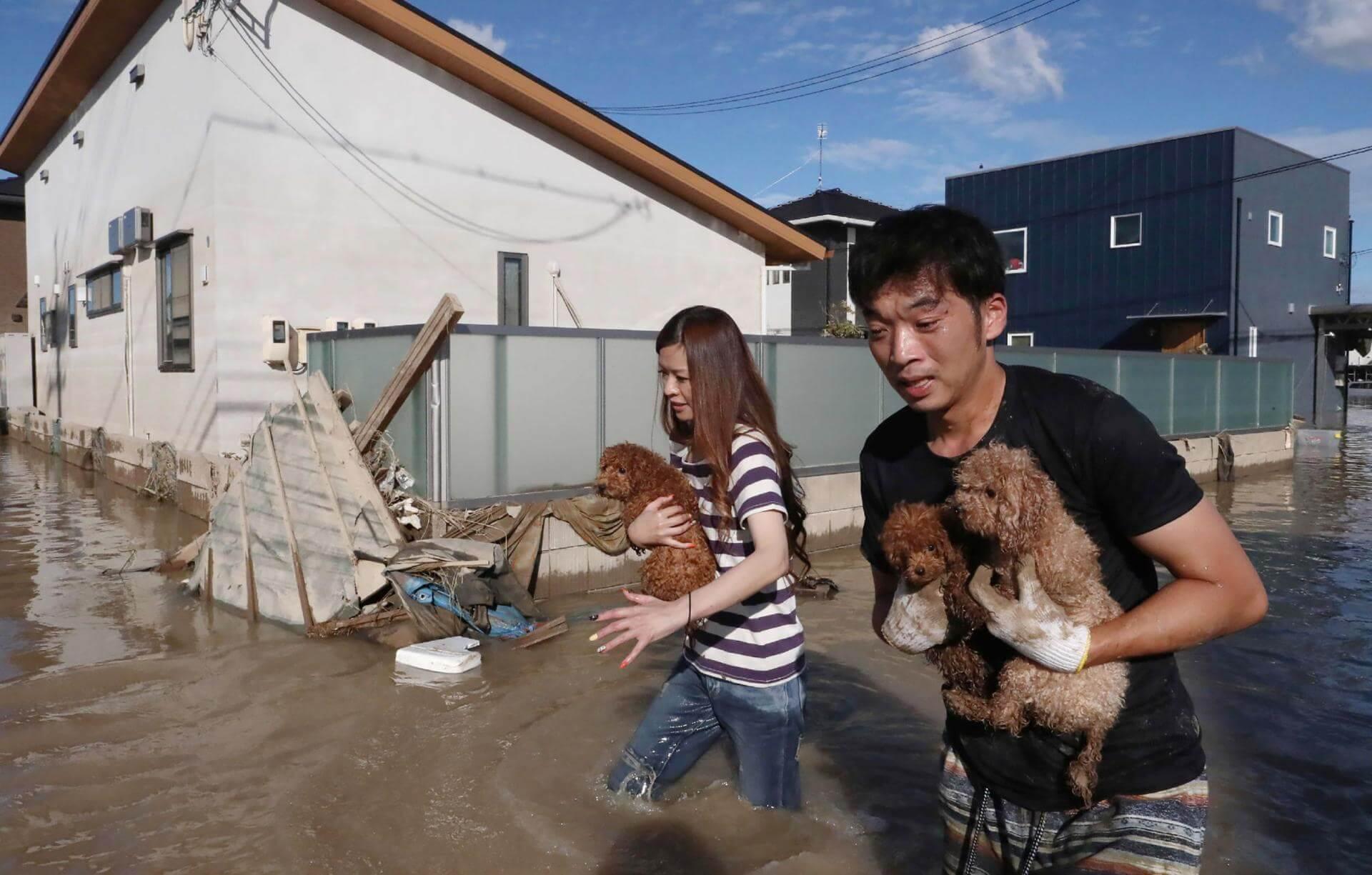 Los residentes rescatan perros del área inundada en Kurashiki, prefectura de Okayama el 8 de julio de 2018. Fotografía: AP