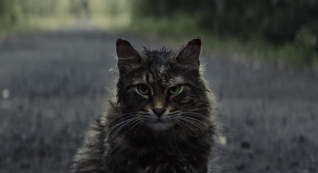 """Con el trailer de """"Pet Sematary"""" de Stephen King, nunca querrás que tu mascota muerta vuelva a la vida"""