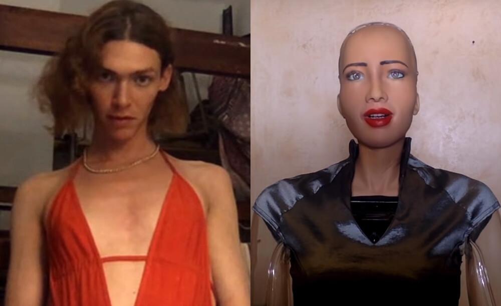 Esto fue lo que pasó cuando SOPHIE y Sophia la robot tuvieron una videollamada