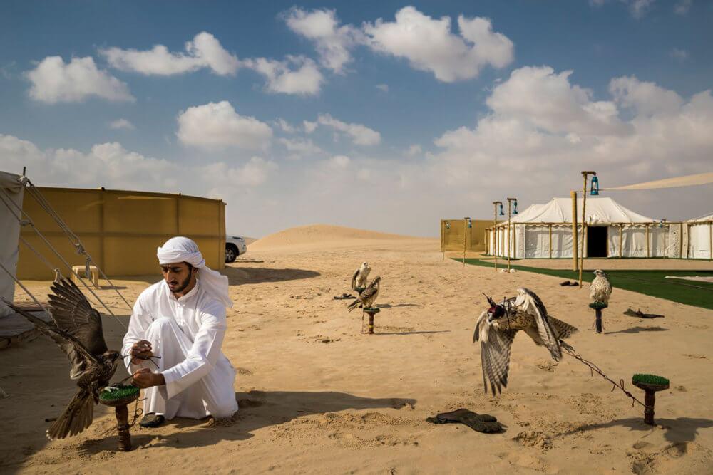 """Brent Stirton, """"Los halcones y la influencia árabe"""" (2018): Varios halcones están atados a una percha en un campamento cerca de Abu Dhabi, EAU. Imagen: © Brent Stirton, Getty Images para National Geographic"""