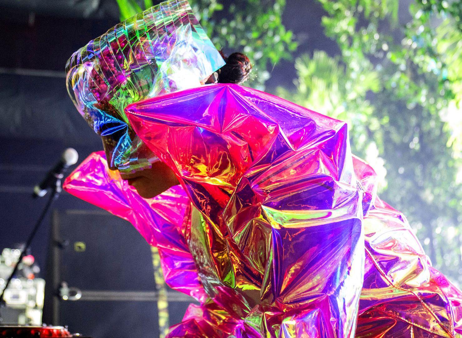 Björk. Fotografía: Santiago Felipe