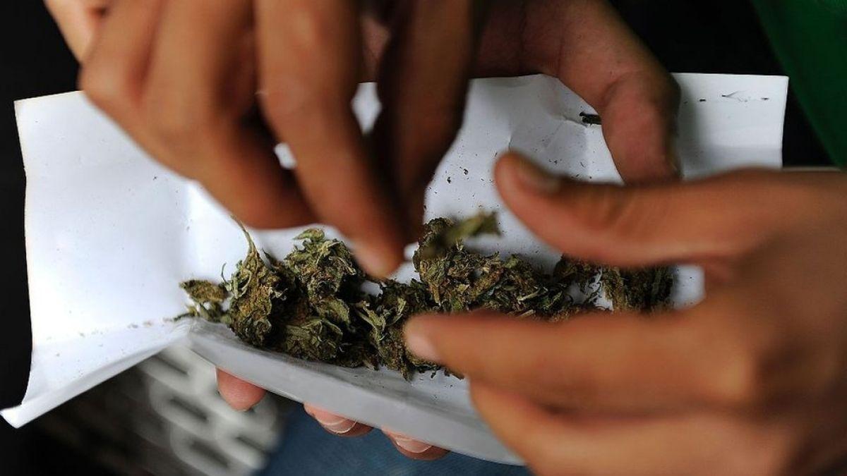 El Senado de México avanza en la legalización del cannabis