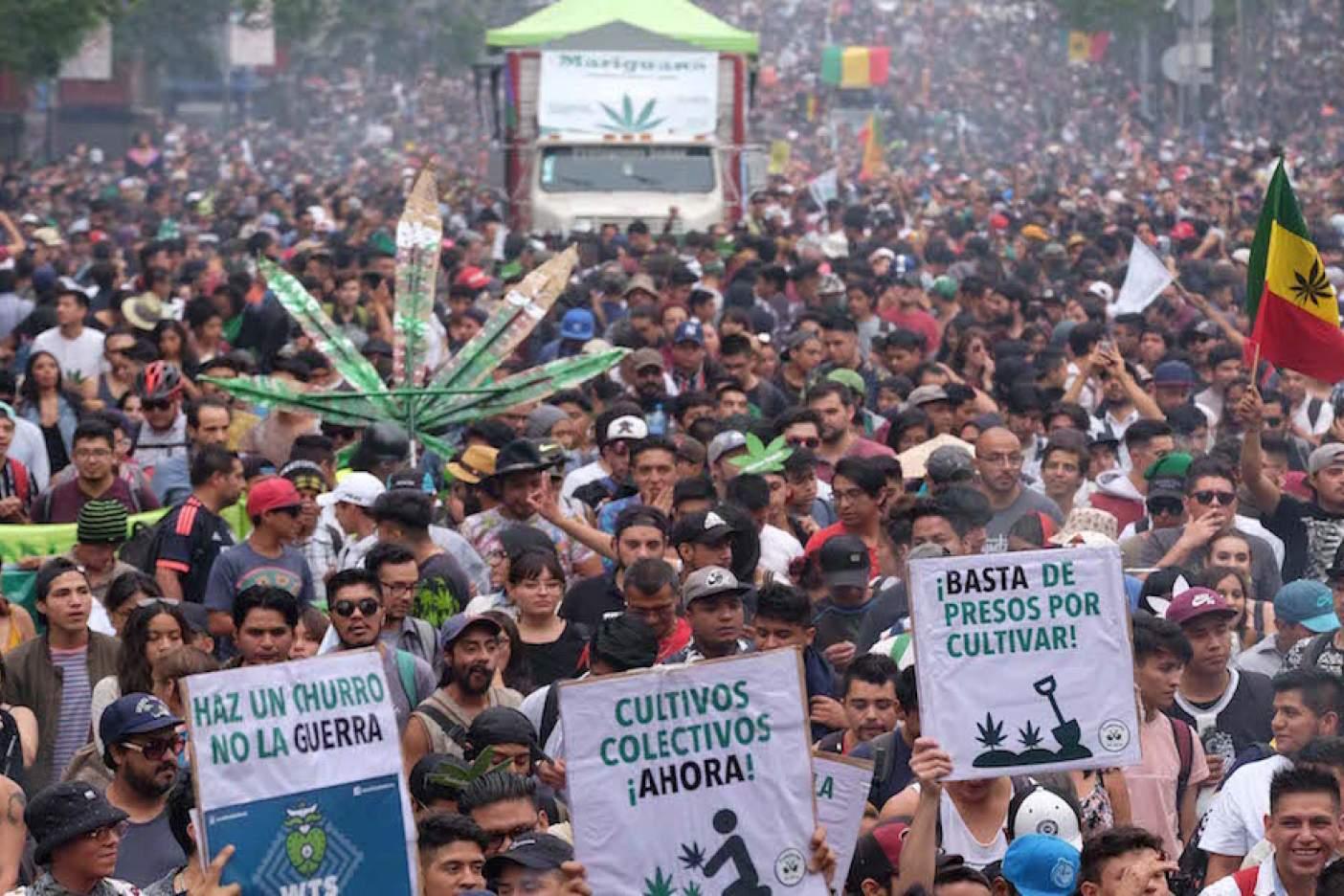 México da un paso atrás en la lucha por la legalización de la marihuana tras desacuerdos en el Senado