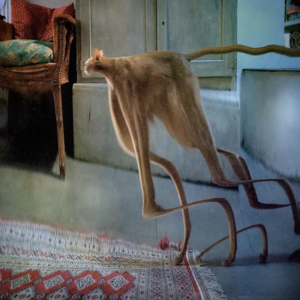 Conoce a François Vogel, el artista visual francés que distorsiona la realidad con sus imágenes