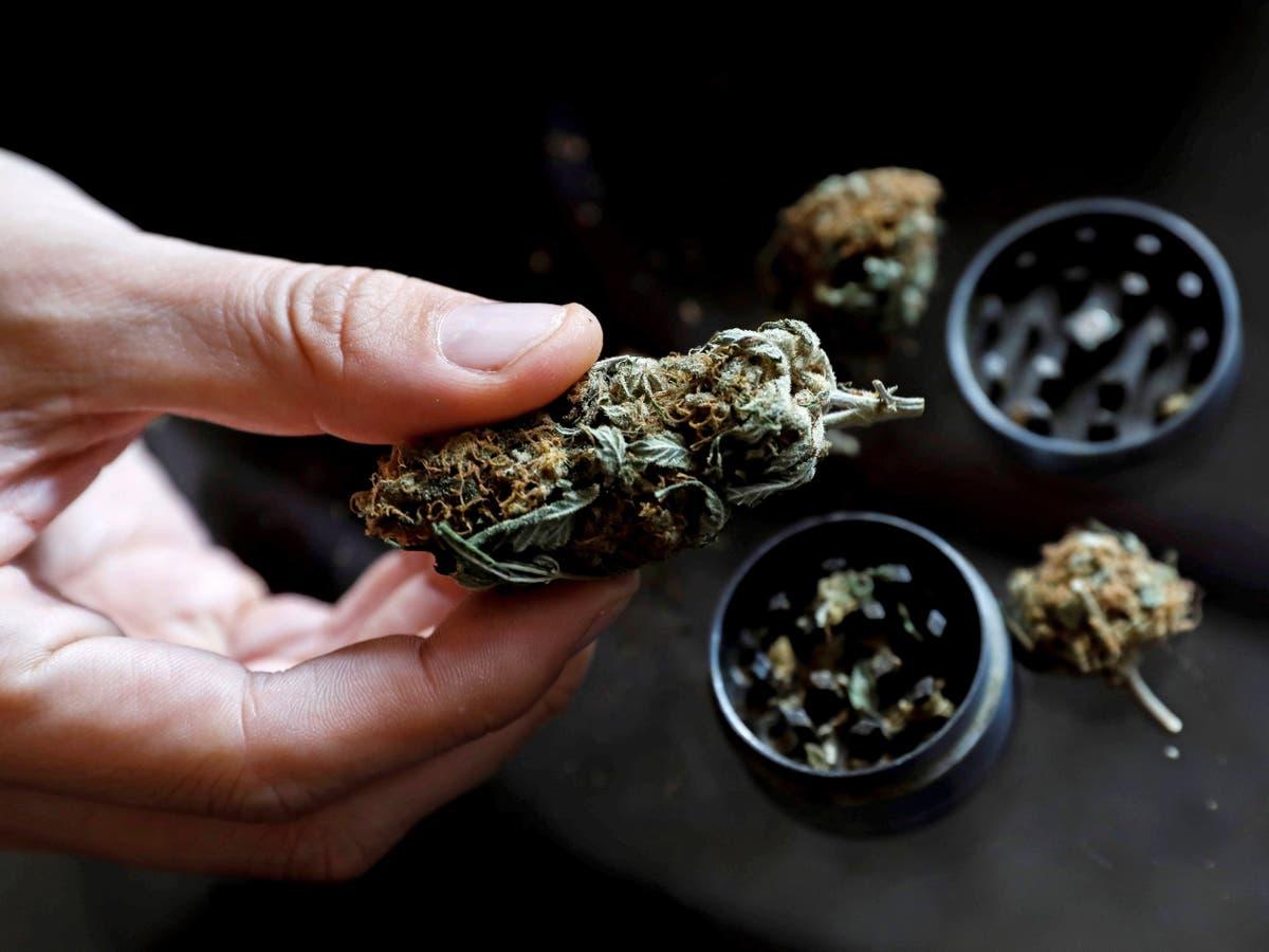 Luxemburgo se convierte en el primer país de Europa que legaliza el cannabis y permite su cultivo para el consumo personal